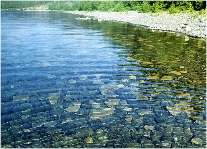 Стихии знаков Зодиака - Вода