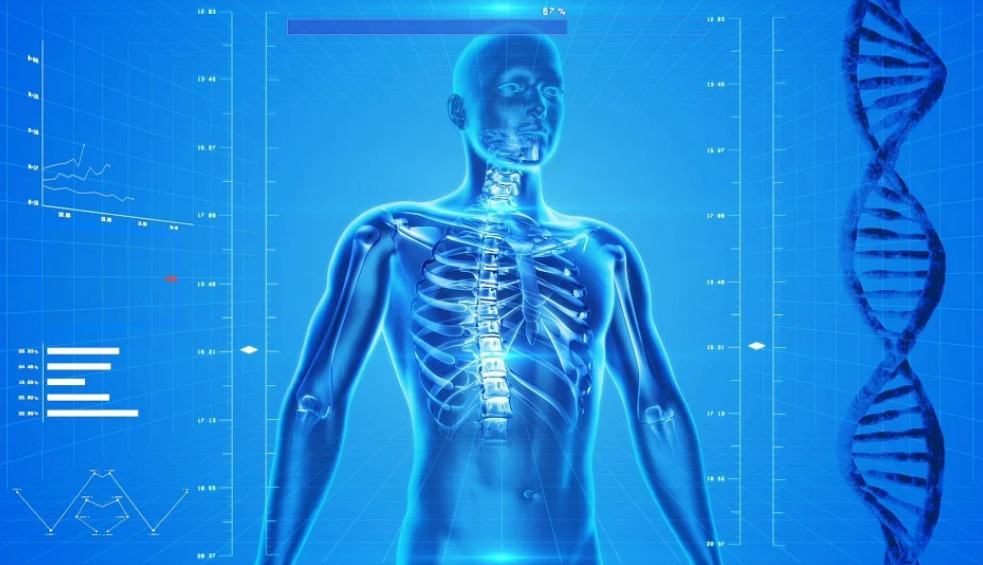 100 самых странных фактов о человеческом теле